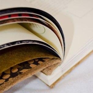 Nahaufnahme des Buches